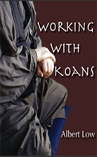Working with Koans